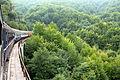 Widoki Czarnogóry z pociągu na trasie Belgrad - Bar 01.jpg
