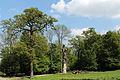 Wien-Hietzing - Naturschutzgebiet 1 - Lainzer Tiergarten - Forstgartenwiese.jpg