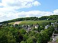 Wiesbaden Weinberg 01.jpg