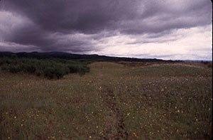 Willamette Floodplain - Image: Willamette Floodplain