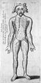 Willem ten Rhijne, Dissertatio de arthritide Wellcome L0029010.jpg