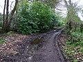 Winters Lane - geograph.org.uk - 1238171.jpg