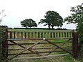 Wooden gate - geograph.org.uk - 993029.jpg