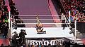 WrestleMania 31 2015-03-29 19-20-32 ILCE-6000 9404 DxO (18089984346).jpg