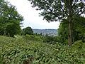 Wuppertal Nordpark 2014 074.JPG