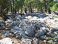 Www.ozmertas.com İNCLE - panoramio.jpg