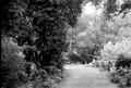 Zappion Athens park.TIF