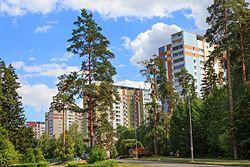 Skyline of Staroye Kryukovo縣