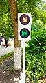 Zelenogradsk - Cat Traffic Light on Kurortny Prospekt.jpg