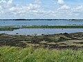 Île-d'Arz-Ostréiculture.jpg
