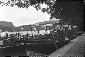 Čolnarji pred pristaniščem na Blejskem jezeru (2).jpg