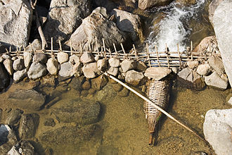 Fish trap - Traditional trap in Vietnam