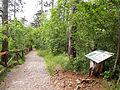 Škocjan trail.jpg
