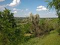 Вид на город с задернованных отвалов - panoramio (4).jpg