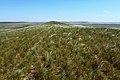 Вид с горы Биктастау в юго-восточном направлении - panoramio.jpg