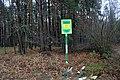 Глибокий ліс IMG 4276.jpg