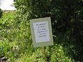 Дендрологічний парк 103.jpg