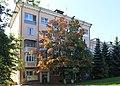 Дом 15 по проспекту Октября, Автозаводский район.jpg