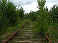 Заброшенная железная дорога - panoramio (1).jpg