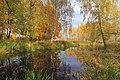 Осенняя Яуза.jpg