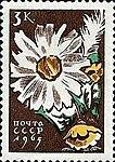 Почтовая марка СССР № 3192. 1965. Цветы.jpg