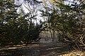 Сирецький дендрологічний парк 39.jpg