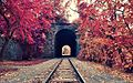 Тунель і залізниця.jpg