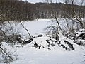 Украина, Киев - Голосеевский лес 87.jpg