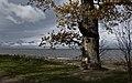У лукоморья - panoramio.jpg