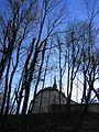 Храм Священномученика Йосафата і всіх Українських Мучеників УГКЦ (монастирський храм). - panoramio (1).jpg
