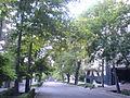 خیابان یکتا - panoramio - Mehrad Afkham.jpg