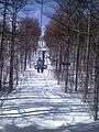あだたら高原スキー場 2.jpg