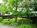 平山郁夫美術館 - panoramio (2).jpg