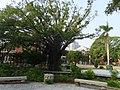 忠義國小 Zhongyi Elementary School - panoramio.jpg