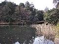 楽山公園 - panoramio.jpg