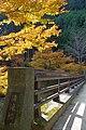 清滝橋 高雄にて Kiyotaki-bashi 2013.11.21 - panoramio.jpg