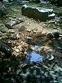 溪水点缀着蓝天 - panoramio.jpg