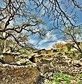 -2012-Iran-Firuzkala-e-olya-H.Jafari - panoramio.jpg