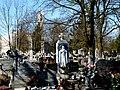 - Cmentarz Nowofarny - panoramio (13).jpg