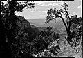 00515 Grand Canyon Yaki Point (7945657792).jpg