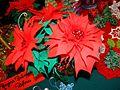 00567 Weihnachtsstern Sanok 2012.JPG