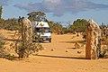 00 4519 Western Australia (Cervantes) - Nambung National Park (Pinacles).jpg