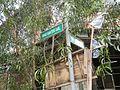 01039jfTondo Abad Santos Manila Roads Landmarksfvf 01.jpg