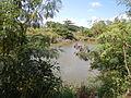 07950jfPampanga River banks Candelaria Welcome Calumpit Bulacan Roadsfvf 09.JPG