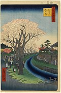 100 views edo 042.jpg