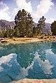 10938 - 13614 Negative0-06-05(1к)Деревья над водой Голубые озера Горный Алтай-2012.jpg