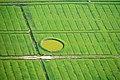 2012-05-13 Nordsee-Luftbilder DSCF8772.jpg