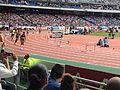 2014 Meeting Areva - 400 m hurdles.jpg