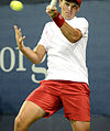 2014 US Open (Tennis) - Qualifying Rounds - Andreas Beck (15056142135).jpg