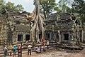 2016 Angkor, Ta Prohm (22).jpg